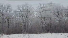 Vista dalla finestra del treno nell'inverno stock footage