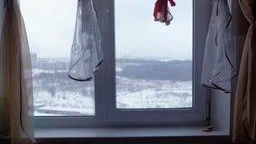 Vista dalla finestra della stanza alla foresta di inverno video d archivio