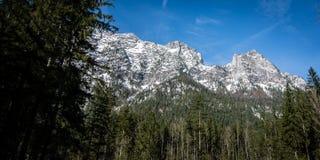 Vista dalla foresta bavarese della montagna alle alpi fotografia stock libera da diritti