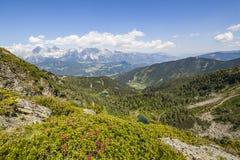 Vista dalla montagna con Alpenrose al lago e dalla montagna Dachstein Immagini Stock