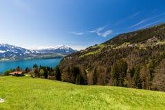 Vista dalla montagna di Niederhorn Beatenber in Svizzera Fotografia Stock Libera da Diritti