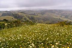 Vista dalla parte superiore della montagna fotografie stock libere da diritti