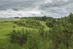 Vista dalla scogliera nella foresta Fotografia Stock