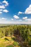 Vista dalla torre nel paesaggio con gli alberi Fotografia Stock