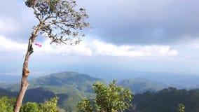Vista das árvores na montanha contra o céu nebuloso video estoque