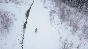 Vista das alturas ao esquiador que desce a inclinação do esqui video estoque