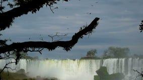 A vista das cachoeiras de foz faz o iguacu em Brasil filme