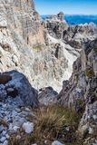 Vista das dolomites de Brenta dos picos de montanha foto de stock royalty free