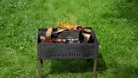 Vista das línguas do fogo no assado do jardim video estoque