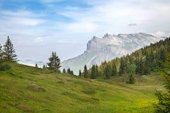 A vista das montanhas altas no verão Imagens de Stock