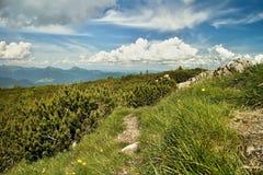 Vista das montanhas de Choc foto de stock royalty free
