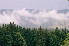 A vista das montanhas A parte superior da névoa do óleo Fotos de Stock Royalty Free