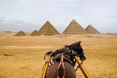 A vista das pirâmides de um cavalo e o transporte montam Fotografia de Stock Royalty Free
