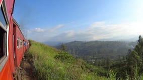 Vista das plantações de chá do trem vídeos de arquivo
