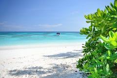 Vista de árbol y la manera a la playa y al mar en la isla de Ko TA chai en Tailandia Fotos de archivo