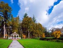 Vista de árvores do outono e de trajeto do esclarecimento ao miradouro de madeira Fotografia de Stock Royalty Free