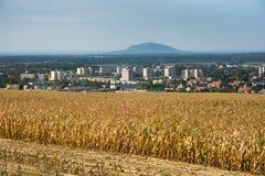 Vista de Ajka, Hungria Fotografia de Stock Royalty Free