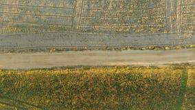 Vista de arriba hacia abajo a?rea del campo arado durante puesta del sol almacen de metraje de vídeo