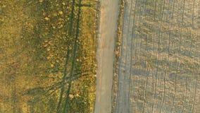 Vista de arriba hacia abajo a?rea del campo arado durante puesta del sol almacen de video
