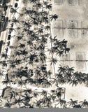 Vista de arriba panorámica del parque y del océano Dri de Miami Beach Lummus imagen de archivo libre de regalías