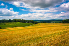Vista de campos de exploração agrícola e de Rolling Hills em Carroll County rural, M imagens de stock