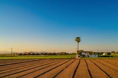 Vista de campos y de edificios agrícolas cerca de Valencia antes de la puesta del sol españa Foto de archivo libre de regalías