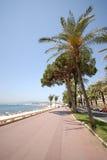 Vista de Cannes (riviera francesa Fotografía de archivo libre de regalías