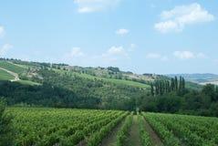 Vista de Castellina no Chianti, Toscânia fotografia de stock royalty free