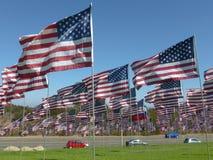 Vista de centenares de banderas americanas en un césped herboso en meridional Imágenes de archivo libres de regalías