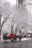 Vista de Central Park após uma tempestade da neve Foto de Stock