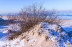 Vista de dunas en invierno Foto de archivo
