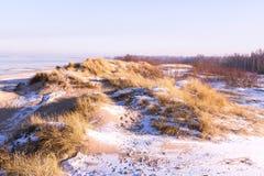 Vista de dunas en invierno Imagen de archivo libre de regalías