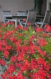 Vista de flores y de sillas rojas del terasse. Imagen de archivo