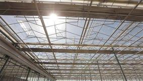 Vista de hacia arriba a través del top de invernadero de la industria, de líneas de riego y de equipo de iluminación en un cuarto metrajes