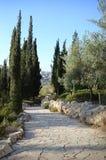 Vista de Jerusalén del monte de los Olivos Imágenes de archivo libres de regalías