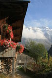 Vista de Jungfrau de Murren Switzerland Imagem de Stock Royalty Free