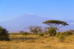 Vista de Kilimanjaro Imágenes de archivo libres de regalías