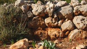 Vista de la albañilería de piedra de la casa antigua almacen de video