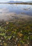 Vista de la bahía de Bantry en verano imagen de archivo