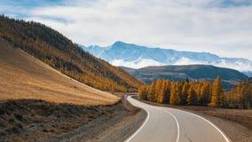 Vista de la carretera de Chuya y del bosque amarillo del otoño en un fondo del canto del norte-Chuya de la montaña de la repúblic Imagen de archivo libre de regalías