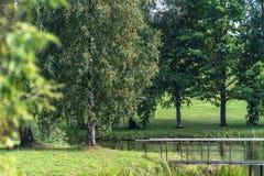 Vista de la charca en campo en Sunny Summer Day con el puente del metal en marco, concepto de paz y armonía foto de archivo
