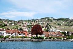 Vista de la ciudad del lago Lemán Foto de archivo libre de regalías