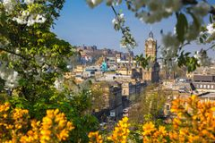Vista de la ciudad vieja Edimburgo con los árboles de la primavera en Escocia Fotografía de archivo