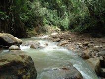 Vista de la corriente del río en el estado de Barinas fotos de archivo
