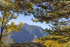 Vista de la cumbre nevosa del monte Olimpo en el marco de las ramas de árboles con follaje del otoño foto de archivo libre de regalías