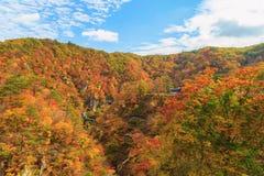 Vista de la garganta en la estación del otoño, Miyagi, Japón de Naruko imagen de archivo