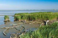 Vista de la laguna de Scardovari, delta del río Po, mar adriático, él Imagen de archivo
