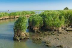 Vista de la laguna de Scardovari, Po& x27; delta del río, mar adriático, él Fotos de archivo libres de regalías