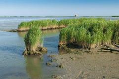 Vista de la laguna de Scardovari, Po& x27; delta del río, mar adriático, él Foto de archivo libre de regalías