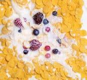 Vista de la leche que vierte en el cereal Imágenes de archivo libres de regalías